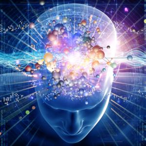 頭の中にある宇宙